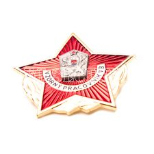 Odznak vzorný pracovník VB