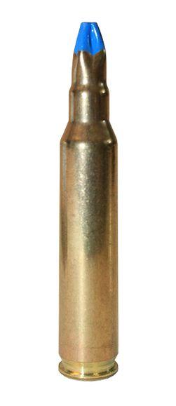 Expanzné strelivo 5,56 mm Nato/223 Rem. /20 ks Blank